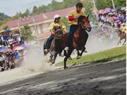 Horse race on the Bac Ha Plateau