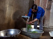About 52 percent of rural residents in Hanoi enjoy clean water