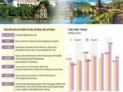 Vietnam-Indonesia Strategic Partnership