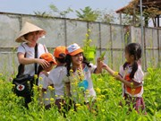 Agriculture tourism in Ho Chi Minh City needs boost