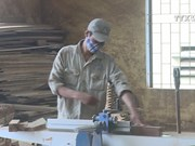 Vietnam's wood export expands nearly 16%
