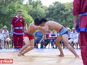 Attraction of Vietnam's traditional wrestling