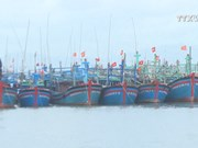 Efforts against illegal fishing