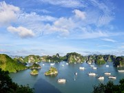 Hanoi-Ha Long Bay trip an affordable luxury: UK newspaper