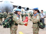 Vietnam to improve capacity in peacekeeping operations