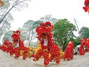 Kylin-lion dance performance sets Guinness Vietnam Record