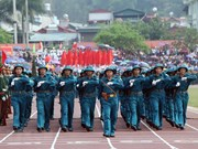 65th anniversary of Dien Bien Phu victory celebrated