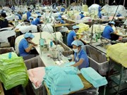 Dong Nai's nine-month FDI exceeds yearly target