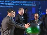 Vietnam's largest private power plant completed