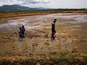 Vietnam responds to World Meteorological Day