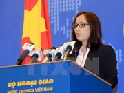 Foreign Ministry deputy spokeswoman clarifies citizen protection