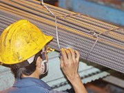 Steel shares rise, riding on high hopes