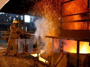 Hoa Phat to build 180 mln USD plated-steel sheet plant