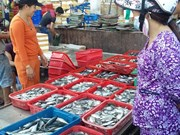 Central provinces put clean fish for sale amid poisoned fish fear