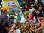 Southern fruit festival opens in HCM City