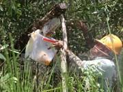 Ca Mau reopens U Minh Ha cajuput forests