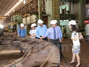 Workshop promotes Indian investment in Vietnam