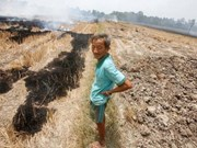US continues to help Vietnam's drought-hit provinces