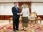 Vietnam to help Laos hold training courses for NA deputies