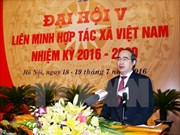 Cooperatives should be restructured for stronger development: official