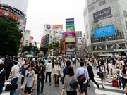More Vietnamese people spend vacations in Japan