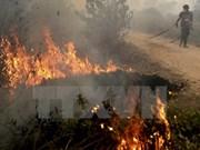 Indonesia pledges to tackle haze