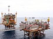 VN Index falls on sliding oil prices