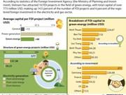 FDI in green energy reaches over 770 million USD