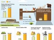 Farm economy grows fast in Vietnam