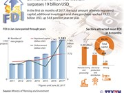 Six-month FDI flow into Vietnam surpasses 19 billion USD