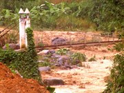Rural people in need of new bridges after flood