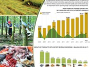 Agro-forestry-fishery exports up 9.24 percent annually