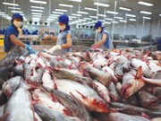 Vietnam's Tra fish export sees competitors