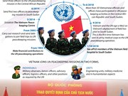 Vietnam's contributions to UN peacekeeping operations