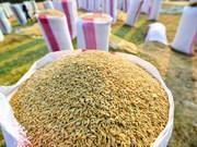 Vietnamese rice needs to raise its value