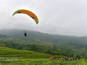 Paragliding takes off in Tuyen Quang for first time