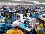 Vietnam lures 1.9 billion USD in FDI in January