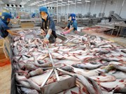 Tra fish sector aims high in 2019