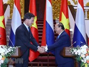 Vietnam - Netherlands comprehensive cooperation