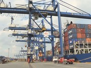 Trade surplus swells to record high in 11 months amidst COVID-19