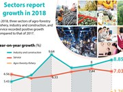 Sectors report growth in 2018