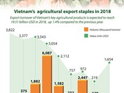 Vietnam's  agricultural export staples in 2018
