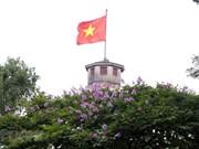 Summer flowers in Hanoi