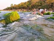 Mossy rocks on Da Nang stunning beach