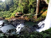 Dambri Waterfall - Central Highlands' majestic beauty
