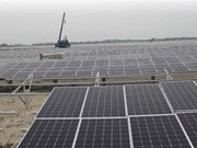 Quang Tri's first solar power plant to be operational in June