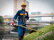 Environment workers clean up To Lich river