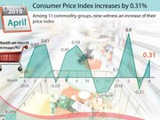 Consumer Price Index up by 0.31%