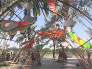 Kite festival in Thua Thien-Hue