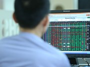 How Vietnam Stock Exchange's structure looks like?